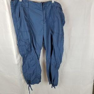 Gap blue surplus capri pants